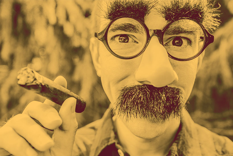 hiding in plain sight with a Groucho Marx disguise