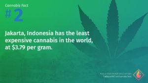 Cannabis Fact 2
