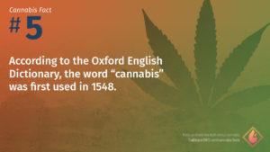 Cannabis Fact 5