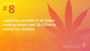 Cannabis Fact 8
