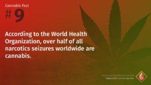 Cannabis Fact 9