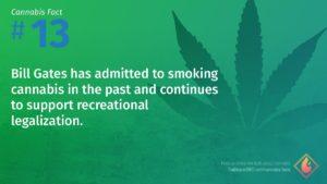 Cannabis Fact 13