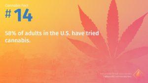 Cannabis Fact 14