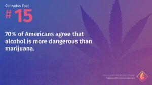 Cannabis Fact 15