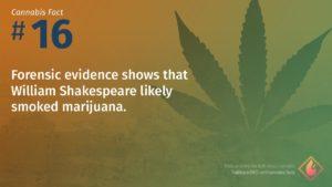 Cannabis Fact 16