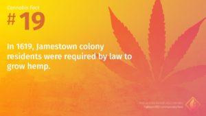 Cannabis Fact 19