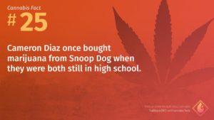 Cannabis Fact 25