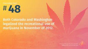 Cannabis Fact 48