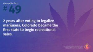 Cannabis Fact 49
