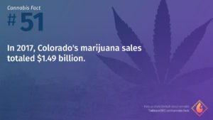 Cannabis Fact 51