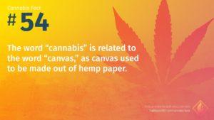 Cannabis Fact 54
