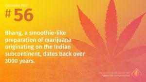 Cannabis Fact 56