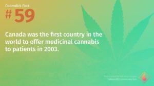 Cannabis Fact 59