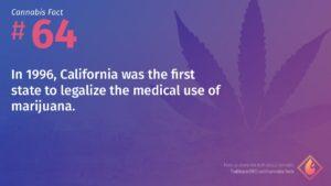 Cannabis Fact 64