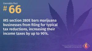 Cannabis Fact 66