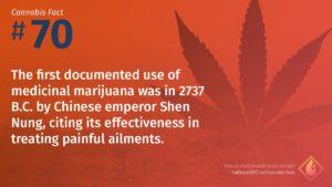 Cannabis Fact 70