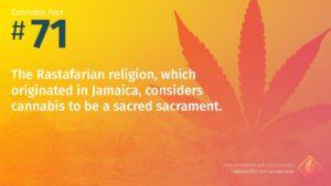 Cannabis Fact 71