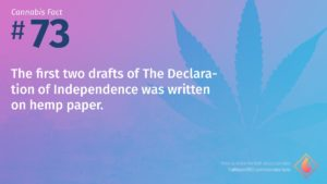 Cannabis Fact 73