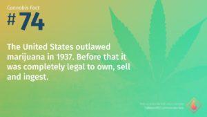 Cannabis Fact 74