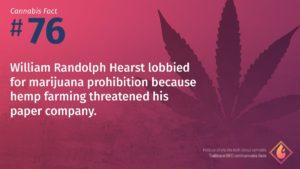 Cannabis Fact 76