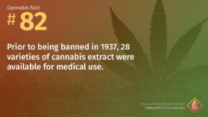 Cannabis Fact 82