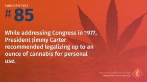 Cannabis Fact 85
