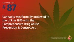 Cannabis Fact 87