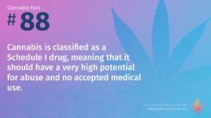 Cannabis Fact 88