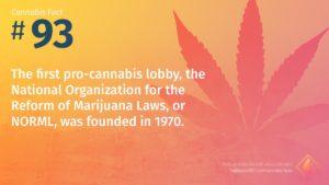 Cannabis Fact 93