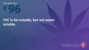 Cannabis Fact 96