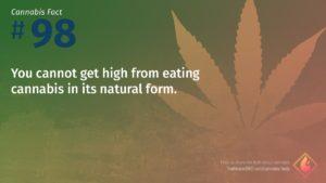 Cannabis Fact 98