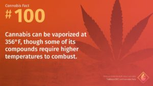 Cannabis Fact 100