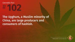 Cannabis Fact 102