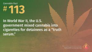 Cannabis Fact 113