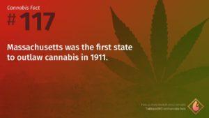 Cannabis Fact 117